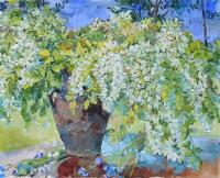 Цветы акации, купить натюрморт в Киеве