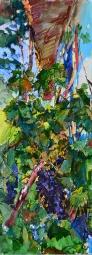Виноград во дворе,картина маслом